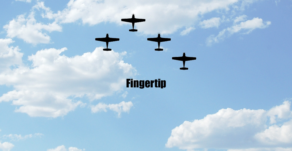 Fingertip Formation Pattern